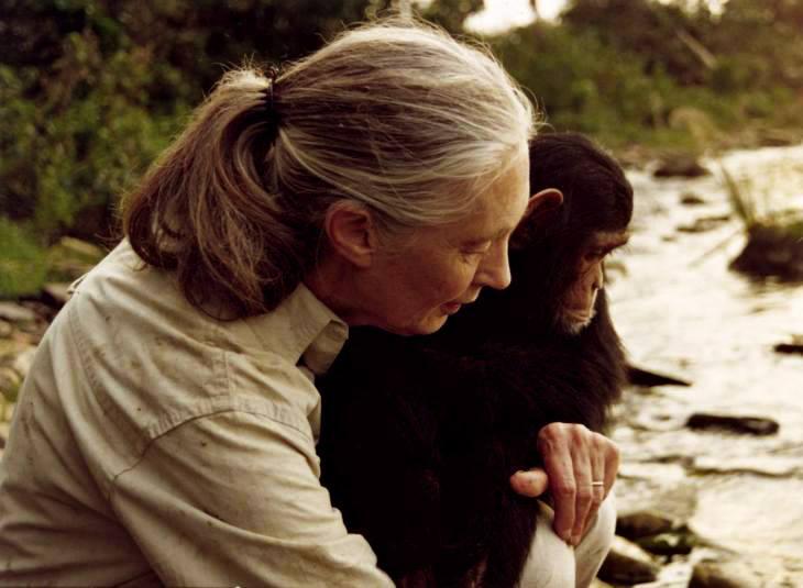 Afirma Jane Goodall: Si las próximas generaciones no hacen un mejor trabajo, en 100 años no me gustaría estar en este planeta